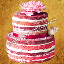 naked birthday cakes