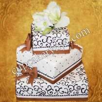 brush embroidery cakes
